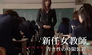 Novice teacher